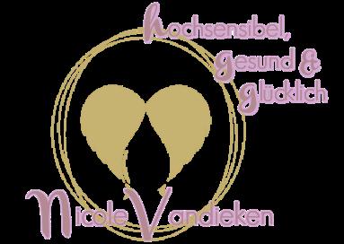 vandieken-academy.info